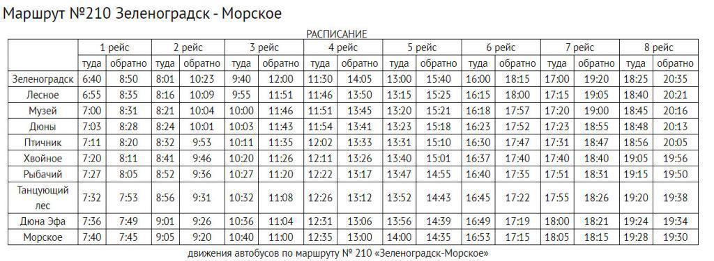 Расписание автобусов из Зеленоградска на Куршскую косу