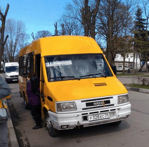 Автобус из Зеленоградска на Куршскую косу