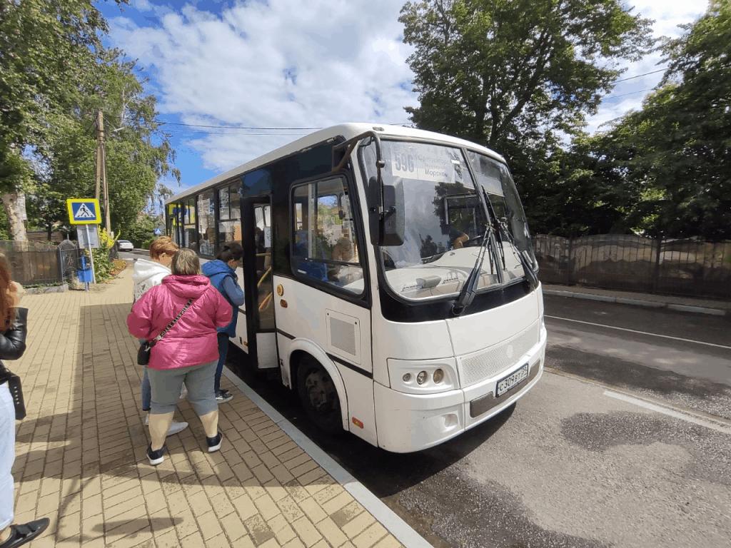 Автобус из Светлогорска на Куршскую косу