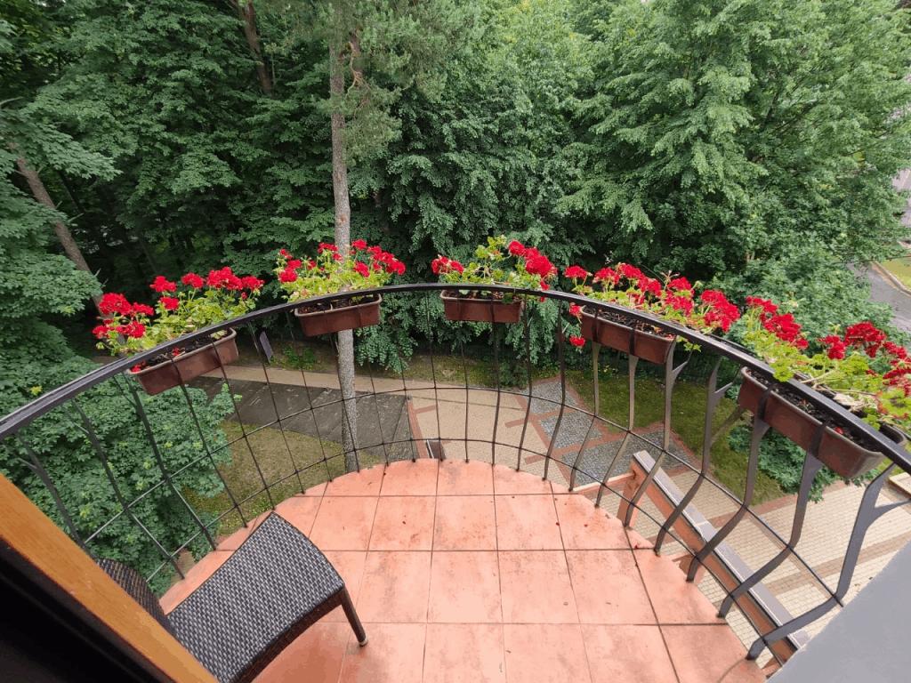 Отель Люмьер Светлогорск. Балкон