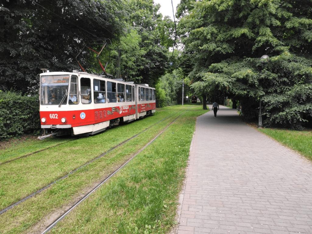 Фестивальная аллея и калининградский трамвай