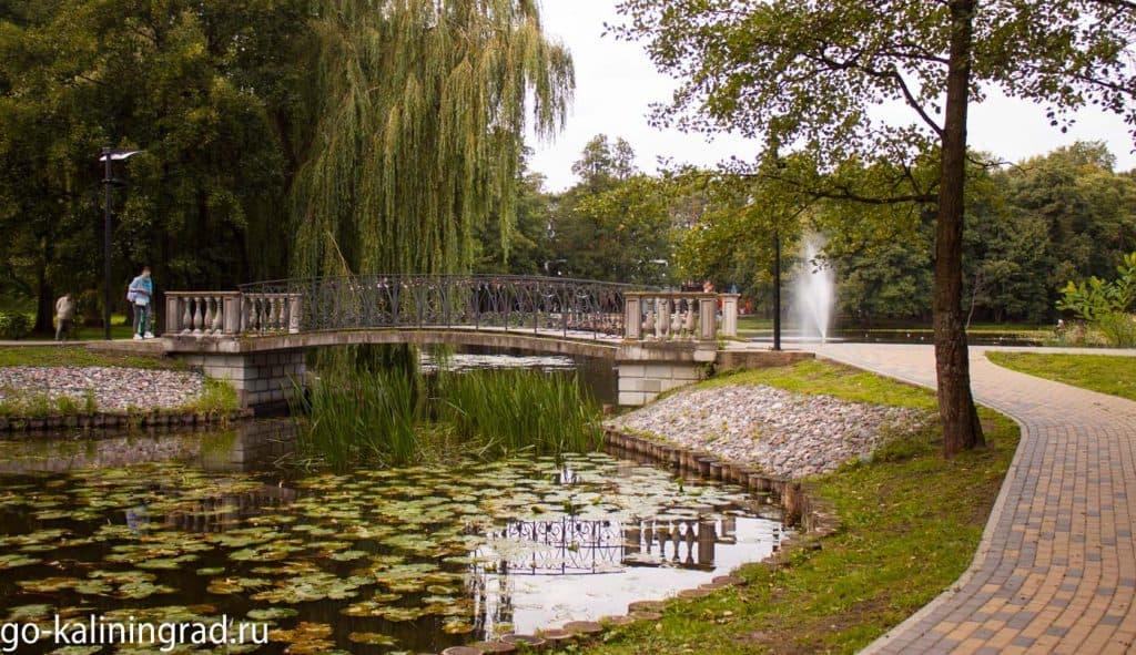 Городской парк Зеленоградска