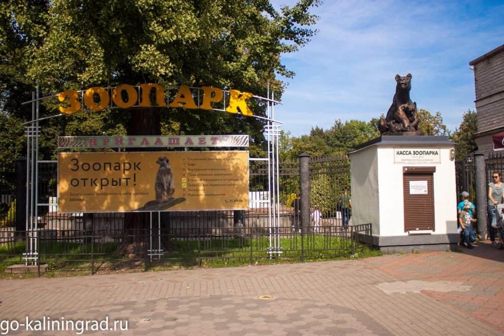 Куда сходить в Калининграде - зоопарк