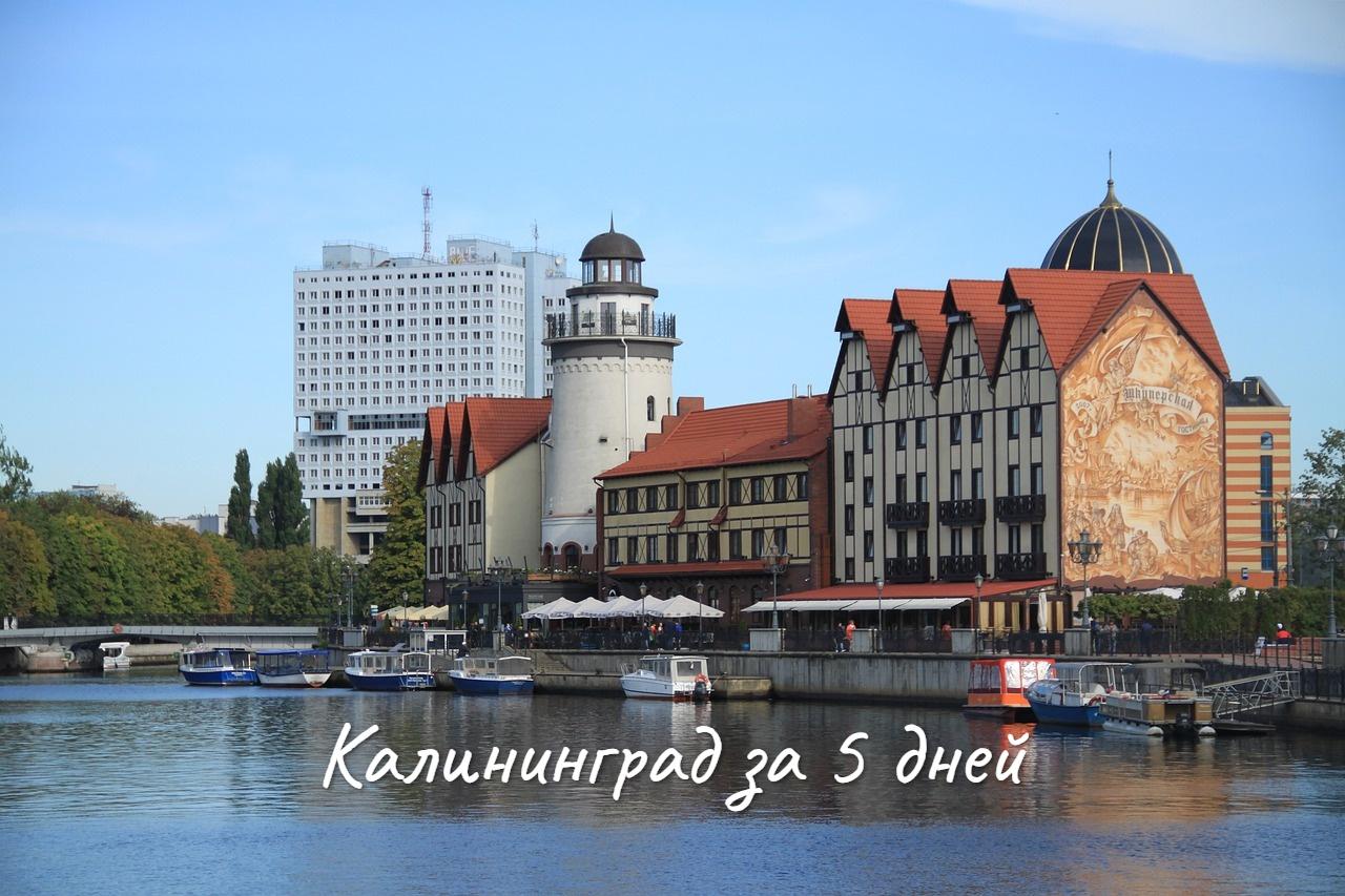 Калининград за 5 дней – что посмотреть