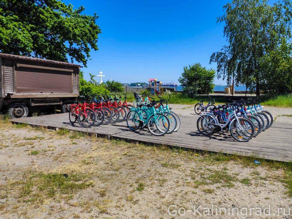 Прокат велосипедов на Балтийской косе