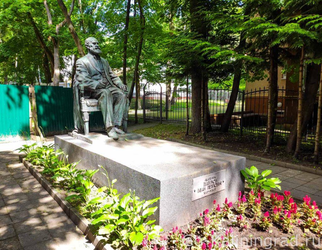 памятник лауреату Нобелевской премии академику Ивану Петровичу Павлову